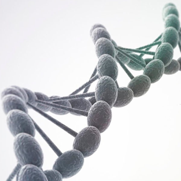 DNAtest